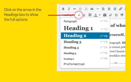 Headings in the WordPress Visual Editor