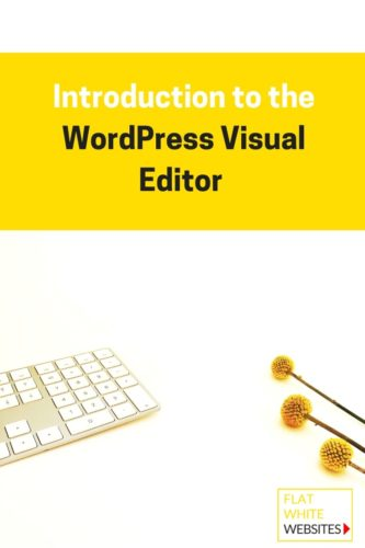 Introduction to the WordPress Visual Editor
