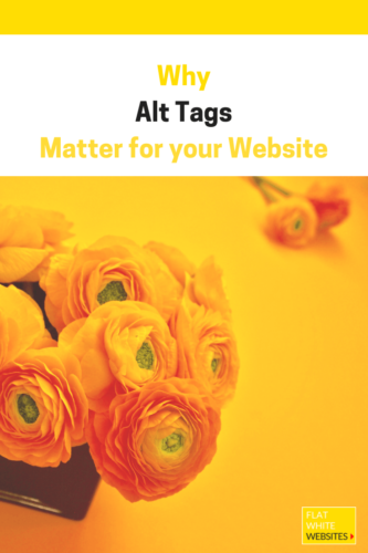Yellow Ranunculus for Alt Tag blog